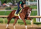 Podcast: Eclipse Awards 2013: Top 3-year-olds