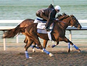 Eight BC Contenders Work at Keeneland