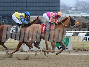 Ruler On Ice - Allowance win, January 30, 2013.