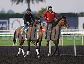 Private Zone - Dubai, March 28, 2013.