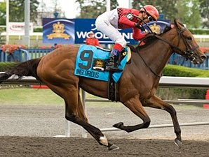 Plate Winner Inglorious Makes Woodbine Return
