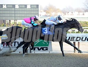 Kellis Got Frosty wins a dvision of the New York Stallion Stakes series at Aqueduct.