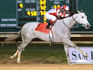 Joyful Victory Named Sam Houston's Top Horse