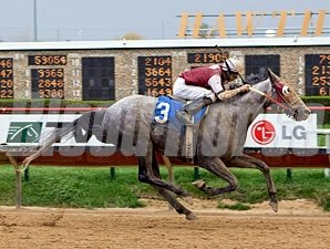 Home's the Best wins the 2009 Peach Of It Handicap.