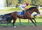 Spurious Precision Honest in Saratoga Special