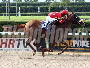 Field Commission wins 2012 Ponche Handicap.