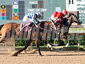 Aces N Kings wins the  2010 TTA Sales Futurity Stakes (Colts and Geldings Division).