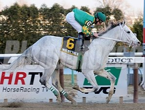Inherit the Gold wins the 2011 Kings Point.