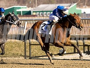 Harissa wins the 2011 Barbara Fritchie.