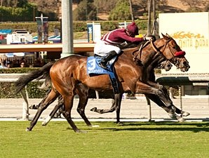 Tiz Flirtatious Wins Rodeo Drive at Wire