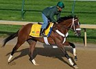 Mucho Macho Man Drills 4F in :49 1/5