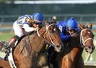 Tight Battle for 3-Year-Old Filly Eclipse