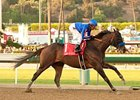 Game On Dude Aces Awesome Again Test