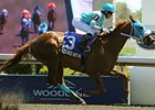 Essence Hit Man Breaks Woodbine Track Record