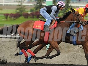 Smartyfly - Woodbine, June 5, 2013.