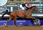 Steve Haskin's Derby Dozen for Jan. 27, 2015