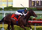 Buffalo Man, Shakis Vie in Dixie Stakes