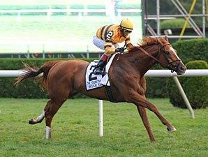 Wise Dan Flies in Turf Work; Others Breeze