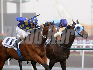 J J The Jet Plane wins the 2011 Al Quoz Sprint.