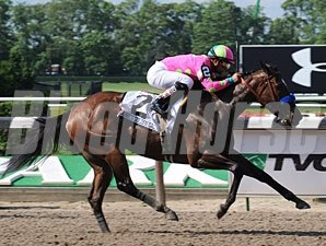 Gabby's Golden Gal wins the 2009 Acorn