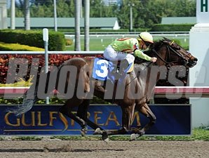 Holdin Bullets wins at Gulfstream Park 1/13/2013.