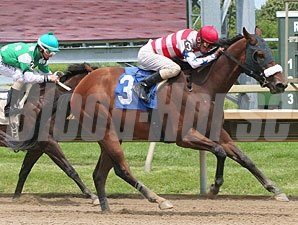 Trade Secret wins the 2011 Peppy Addy Stakes.