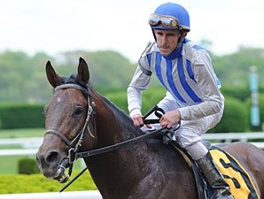 Alternation to Skip Belmont Stakes