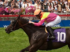 Nine Vie for Breeders Cup Berth in Canadian