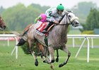 Grade I Winner Winter Memories Retired
