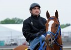 Summer Bird Breezes at Monmouth for Haskell