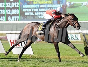 Naples Bay wins the 2012 Noble Damsel.