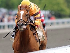 Wise Dan Fires Bullet Work at Keeneland
