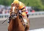 Wise Dan, Alternation Top Stephen Foster