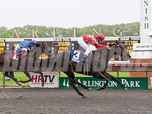 Reigning Catfish wins the 2013 Springfield Stakes.