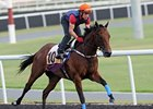 Rocket Man Out of KrisFlyer Sprint