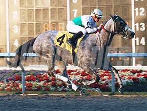 Informed Decision wins the 2010 Windward Stakes.