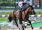 Fly Down, Stay Put Tune Up for Belmont Stakes