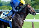 Paynter Diagnosed With Laminitis