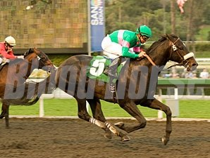 Neko Bay wins the 2010 San Pasqual.