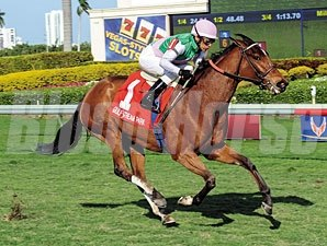 Starformer wins the 2013 The Very One Stakes.