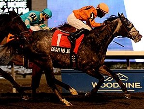 Bear No Joke Pulls Kennedy Road Upset