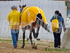 Departing departing after winning the 2013 Illinois Derby.