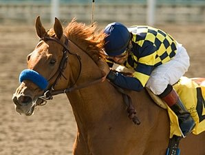 Misremembered to Try Dirt in Indiana Derby