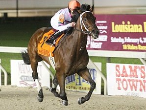 Star Guitar Named Louisiana Horse of the Year