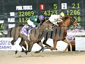 Ruling Class wins the 2009 Lookout Stakes.