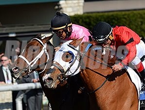 Room Service and Rosalind dead-heat in the 2014 Ashland.