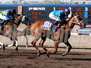 Hush's Storm wins the New Mexico Breeders' Derby.