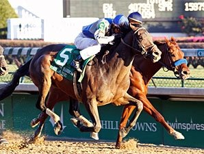 Eight Probables for Stephen Foster Handicap