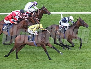 Fiesolana wins the 2014 Coolmore Fastnet Rock Matron Stakes.