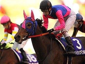 Rallying Meisho Mambo Takes Japan's QE II Cup